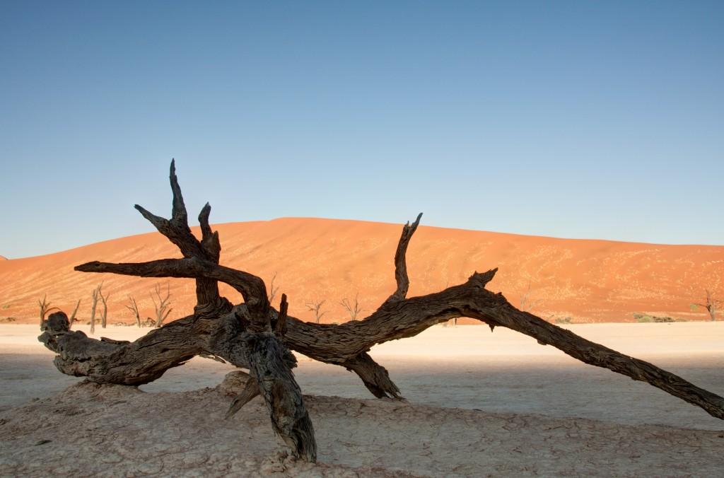 Namibia 2012-1232_3_4